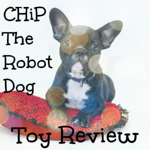 Chip The Robot Dog Review - Why he's lovable and now is the time to buy him