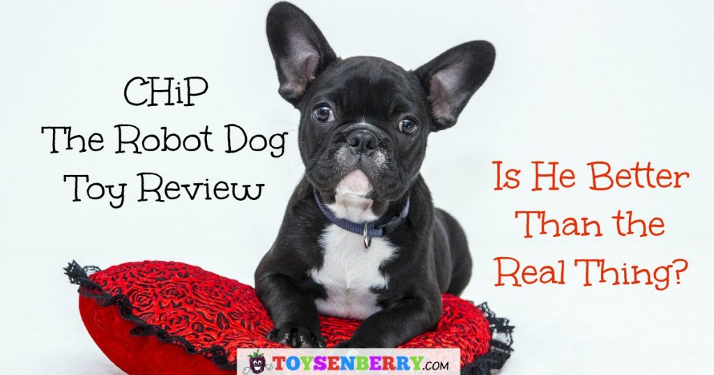 CHiP the Robot Dog Review and why now is the time to buy him